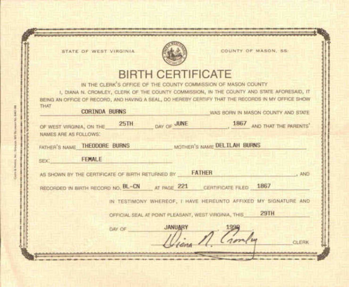 Get your Birth Certificate | O.V.U.S. (Onlinevitalus)
